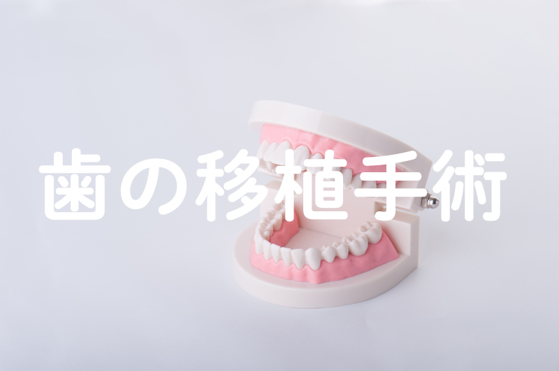 dental ishoku.jpg